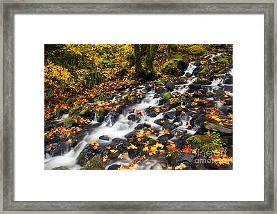 Autumn's Staircase Framed Print by Mike  Dawson