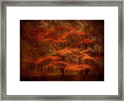 Autumn's Tradition - Ocean County Park Framed Print