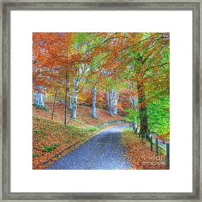 Autumns Way Vert Framed Print by John Kelly