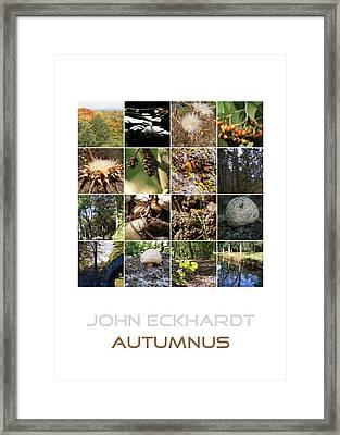 Autumnus Framed Print