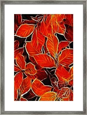 Autums Blood Framed Print by Steve K