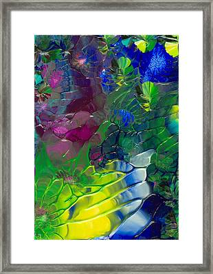 Avatar Framed Print by Nan Bilden