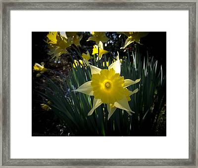 Awakened Framed Print by Victoria Ashley
