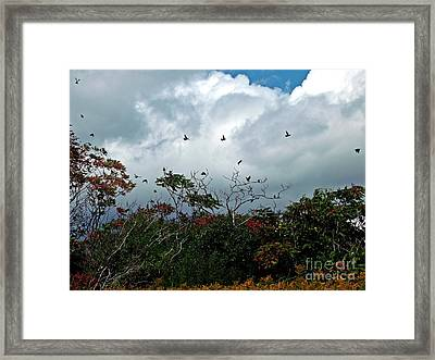 Framed Print featuring the photograph Away To The New Season by Christian Mattison