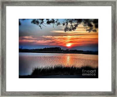Awesome Sunset Framed Print by Claire Reilly
