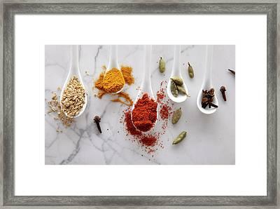 Ayurvedic Warming Spices Framed Print by Shana Novak