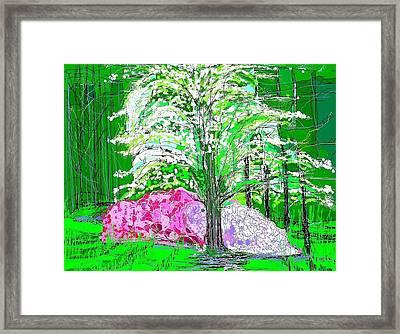 Azaleas And Dogwood Framed Print by Alberto Lacoius-Petruccelli