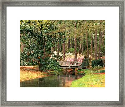 Azaleas And Footbridge Framed Print by Michael Hubrich and Photo Researchers