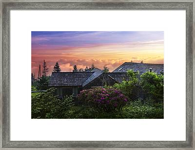 Azaleas At Sunrise Framed Print