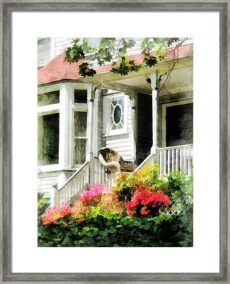 Azaleas By Porch With Wicker Chair Framed Print by Susan Savad