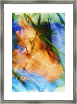 Azul 8 07 Framed Print by Bradley