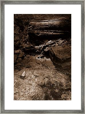 Babble On Framed Print by Ed Smith