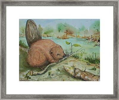 Baby Beaver II Framed Print by Barbara McGeachen