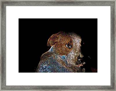 Baby Blue Framed Print by One Rude Dawg Orcutt