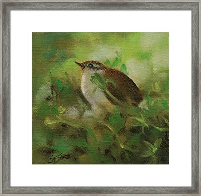 Baby Carolina Wren Framed Print