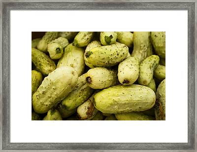 Baby Cucumbers Framed Print by Tanya Harrison