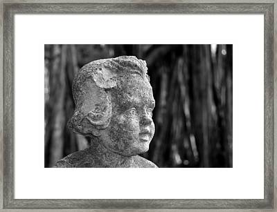 Baby Face Framed Print by David Lee Thompson