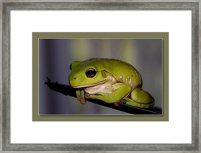 Framed Print featuring the digital art Baby Frog by Kevin Chippindall