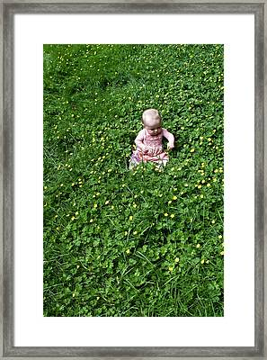 Baby In A Field Of Flowers Framed Print