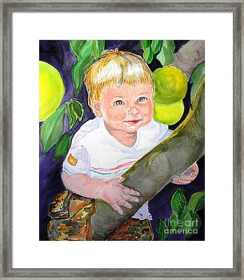Baby In The Tree Framed Print by Susan  Clark