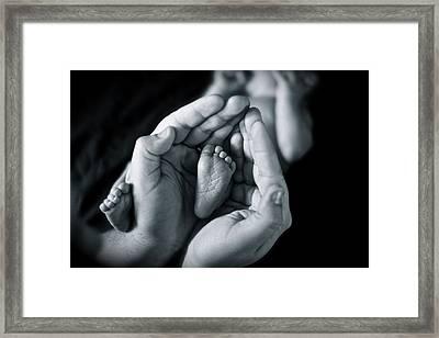 Baby Framed Print by Ivan SABO