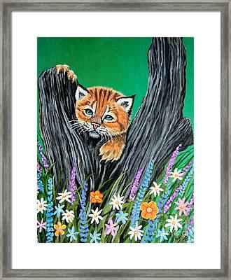Baby Lynx Framed Print