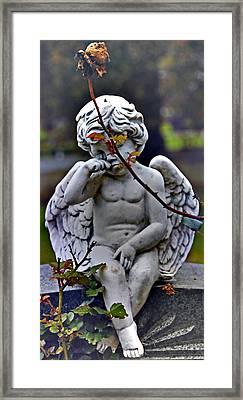 baby tears I Framed Print by Phil Bongiorno