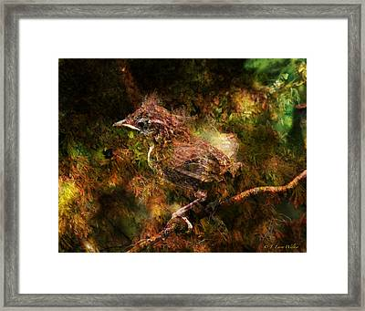 Baby Wren First Fly Framed Print by J Larry Walker