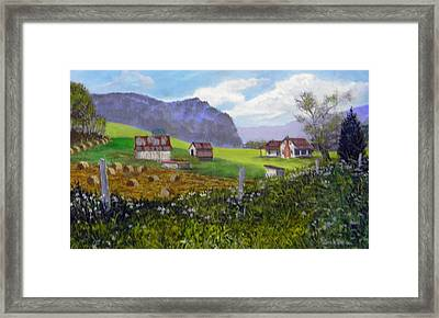 Back Roads Beauty  Sold Framed Print
