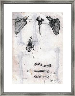 Back Side Front Bottom Framed Print by Duwayne Washington