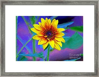 Back Yard Sunshine Framed Print by John  Kolenberg