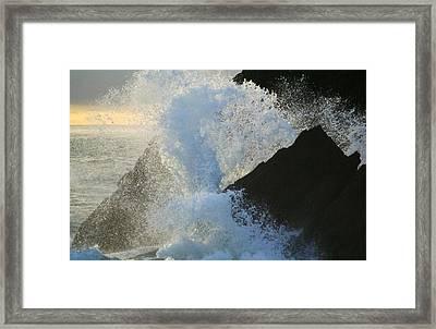 Backlit Wave 2 Framed Print by Michael Courtney