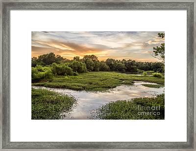 Backwaters Sunset Framed Print