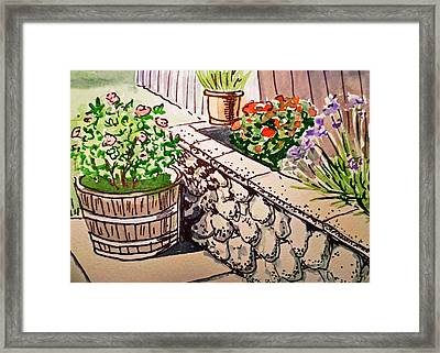 Backyard Sketchbook Project Down My Street Framed Print by Irina Sztukowski