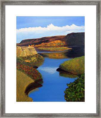 Badlands River Framed Print