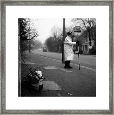 Bag Dog Framed Print by Jim Witts