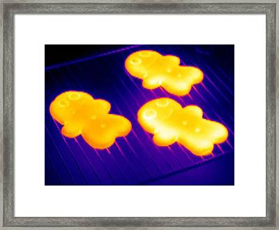 Baked Gingerbread, Thermogram Framed Print