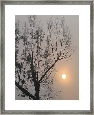 Framed Print featuring the photograph Balance by Lyn Calahorrano