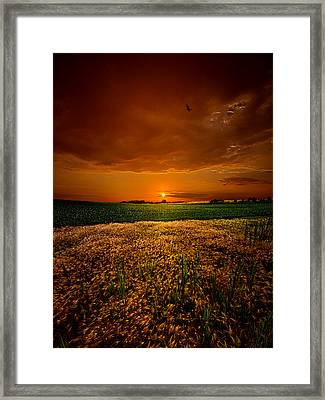 Balance Framed Print by Phil Koch