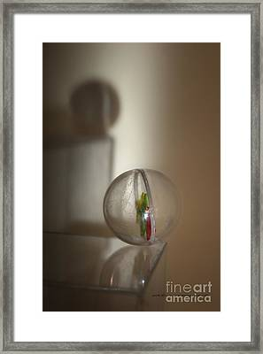Balance Framed Print by Vicki Ferrari Photography