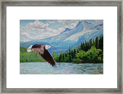Bald Eagle Fishing Framed Print