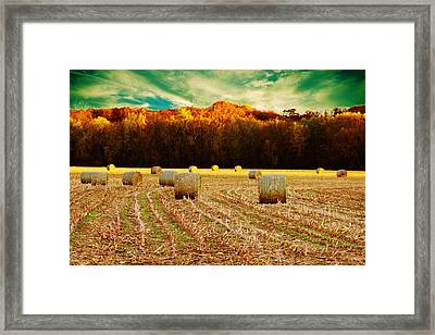 Bales Of Autumn Framed Print by Bill Tiepelman