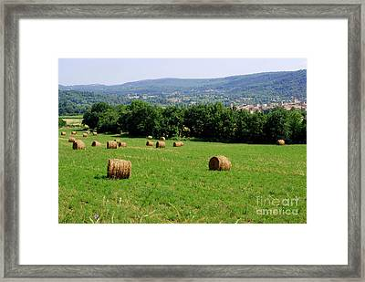 Bales Of Hay Framed Print by Andrea Simon