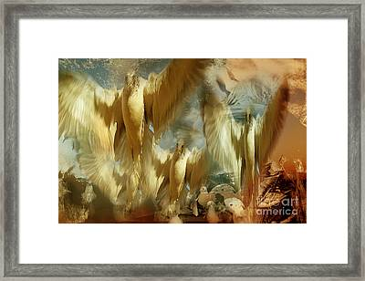 Framed Print featuring the photograph Balet by Danica Radman