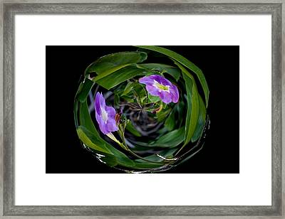 Ball Of Foliage Framed Print