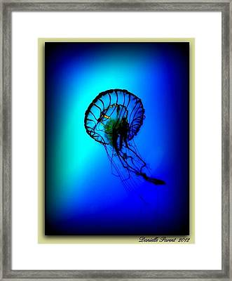 Framed Print featuring the photograph Baltimore Belle  by Danielle  Parent