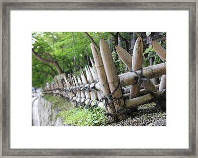 Bamboo And String Framed Print