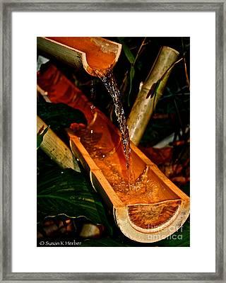 Bamboo Falls Framed Print
