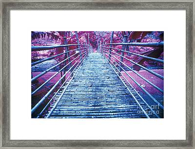 Bamboo Foot Bridge Framed Print by Will and Deni McIntyre