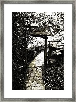 Bamboo Garden - 1 Framed Print